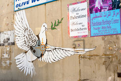 Armored голубь мира стоковое изображение rf