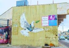 Armored голубь Стоковая Фотография
