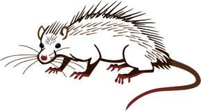 Armored крыса иллюстрация вектора