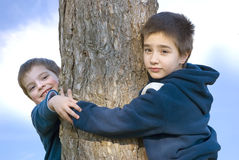 Arms arround. Two happy boys hugging a tree Stock Image