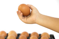 The arms of the boy, catch eggs Royalty Free Stock Photos