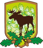 The arms with an elk. And oak leaves Stock Images