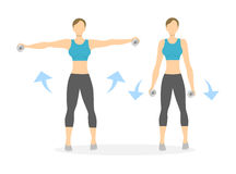 Arms exercise for women. Arms exercise for women on white background. Workout for arms and shoulders with dumbbels. Hands rising Stock Photo
