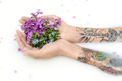 Arms of a girl with colorful tattoos on the surface of milk with. Flower petals. She holds multicolored flowers on her palms. Closeup. Indoors. Horizontal royalty free stock image