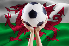 Arms holding ball with flag of Wales Royalty Free Stock Image
