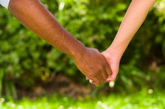 Arms of interracial couple holding hands, great love symbolic concept, green garden background.  Royalty Free Stock Photography