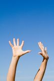 Arms raised hands reaching. Arms raised to sky in success and praise hands reaching up Royalty Free Stock Photography
