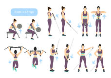 Arms workout set. Arms workout set on white background. Exercises for women. Triceps, biceps strength Royalty Free Stock Photography
