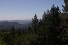 Armstrong Redwoods State Natural Reserve, California. United States - to preserve 805 acres 326 ha of coast redwoods Sequoia sempervirens. The reserve is stock photo