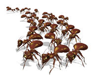 Army of Ants. Warning! An army of ants is headed for your picnic - 3D render stock illustration