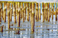 An Army of Planks. An army of wooden planks high above water Royalty Free Stock Photos