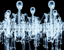 Army of skeletons  on black Stock Photography
