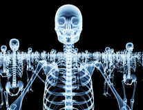 Army of skeletons isolated on black Royalty Free Stock Photography