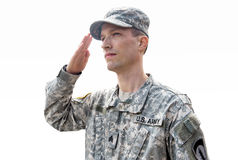 Army soldier isolated on white Stock Photography