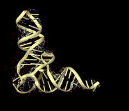 ARN Imágenes de archivo libres de regalías