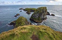 Arnarstapi cliffs royalty free stock photo