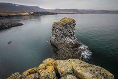 Arnarstapikust van West-IJsland Royalty-vrije Stock Fotografie