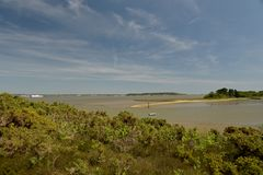 Free Arne Nature Reserve, Dorset Stock Photography - 155552042