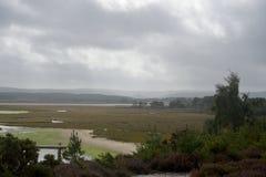 Arne Nature Reserve, Dorset immagini stock