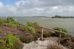 Arne Nature Reserve, Dorset fotografia stock libera da diritti
