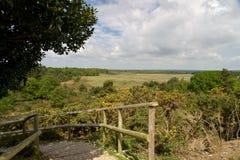 Arne Nature Reserve perto de Wareham imagens de stock royalty free