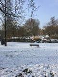 Arnhem zimy kraina cudów Zdjęcia Royalty Free