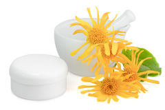Arnica hand cream Royalty Free Stock Image