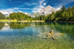 Arnisee med schweiziska fjällängar Arnisee är en behÃ¥llare i kantonen av Uri, Schweiz, Europa royaltyfri bild