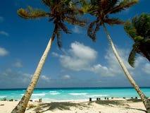 Arno atoll Arkivfoto