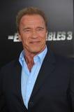 Arnold Schwarzenegger Imagens de Stock
