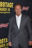 Arnold Schwarzenegger Royalty Free Stock Photography