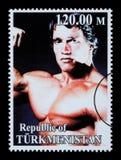 Arnold Schwarzenegger Postage Stamp Immagine Stock Libera da Diritti