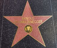Arnold Schwarzenegger star on the Walk of Fame Stock Image