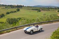 Arnolt布里斯托尔Bolide (1954)在Mille Miglia跑2014年 库存图片