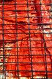 arnoty fillet ryba piec na grillu czerwonego kumberland Zdjęcie Royalty Free