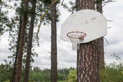 Aro de baloncesto al aire libre de la montaña Imagenes de archivo