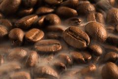 Arom för lukt för kaffebönor som bra dricker i morgonen för vak upp arkivbilder