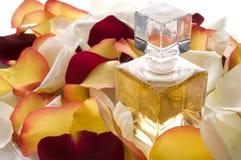 Aroma. Stock Photo