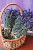 Aroma, Basket, Beautiful, Flowers, royalty free stock images