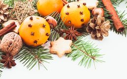 Aroma of Christmas. Fir, tangerins and spices Royalty Free Stock Photo