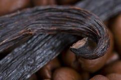 Aroma coffe. Bestandteile Lizenzfreie Stockbilder