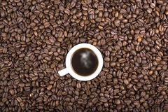The aroma of the coffee Royalty Free Stock Image