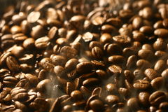 Aroma of coffee Stock Images