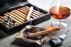 Aroma of cognac and cigar fuming Royalty Free Stock Image
