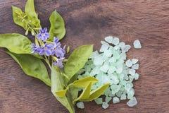 Aroma de la sal del balneario de toda la comida de piel de las flores con las flores púrpuras Fotos de archivo