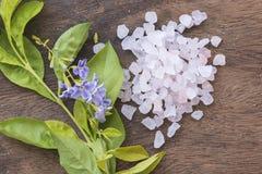 Aroma de la sal del balneario de toda la comida de piel de las flores con las flores púrpuras Fotos de archivo libres de regalías