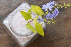 Aroma de la sal del balneario de toda la comida de piel de las flores con las flores púrpuras Imágenes de archivo libres de regalías