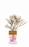 Aroma del árbol de la botella de perfume Fotografía de archivo libre de regalías