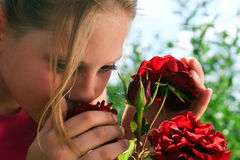 Aroma der roten Rosen Stockfoto