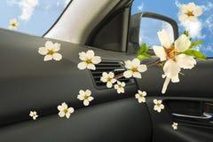 Aroma di stato dell'aria dell'automobile Fotografia Stock